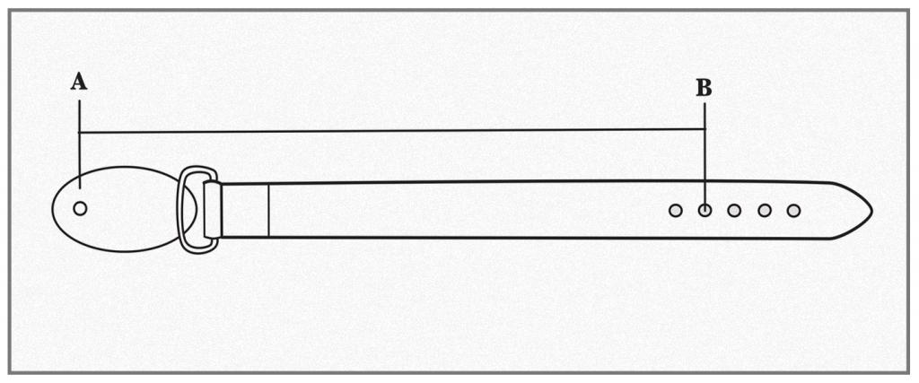 how to measure plaque belt
