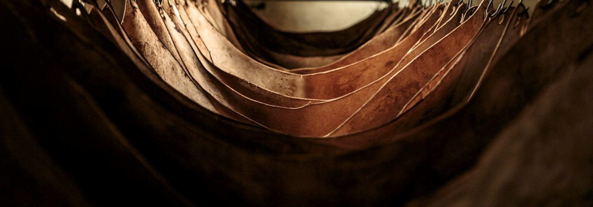 J and F J Baker is Britain's only remaining traditional oak bark tannery.